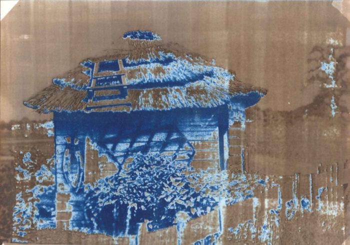 Van Dyke & Cyanotype